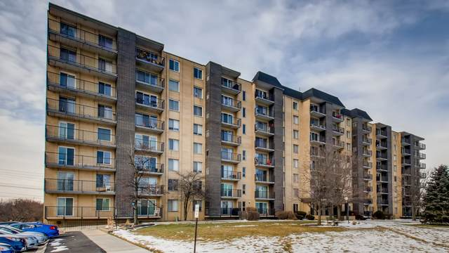 5400 Walnut Avenue #709, Downers Grove, IL 60515 (MLS #10974940) :: Helen Oliveri Real Estate