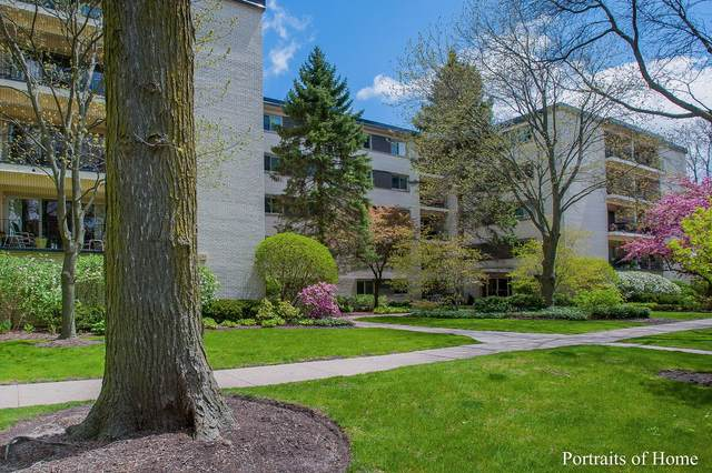 415 Franklin Avenue 2G, River Forest, IL 60305 (MLS #10975018) :: Suburban Life Realty