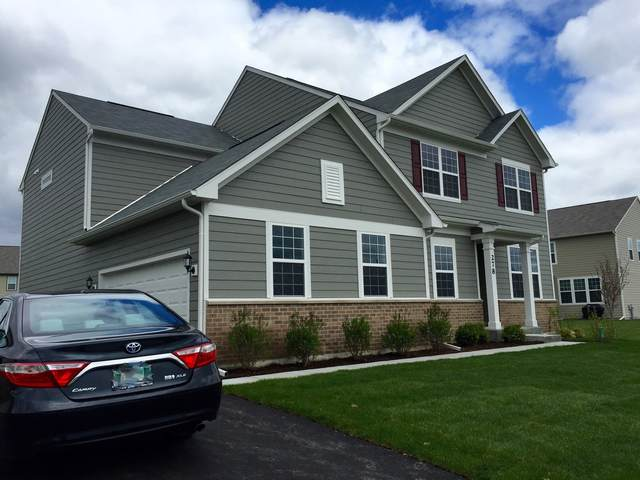 278 Monument Road, Elgin, IL 60124 (MLS #10975134) :: Jacqui Miller Homes
