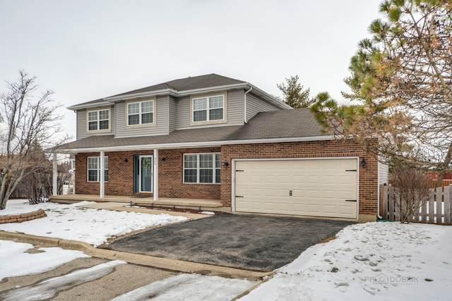 669 N Bridgeport Terrace, Lindenhurst, IL 60046 (MLS #10975189) :: Ani Real Estate
