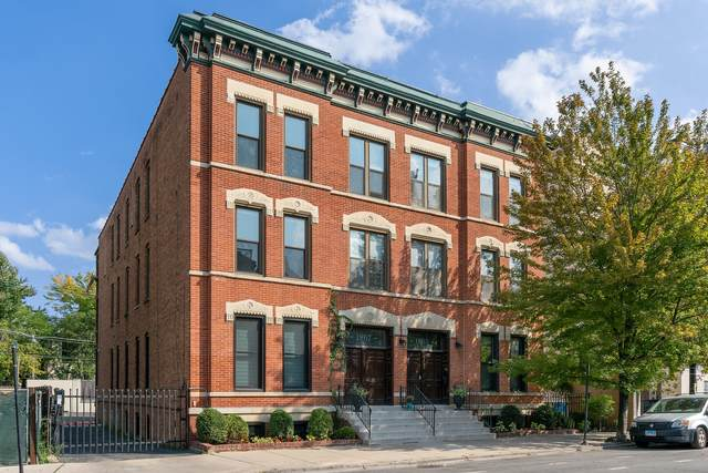 1867 N Halsted Street 2S, Chicago, IL 60614 (MLS #10975242) :: The Wexler Group at Keller Williams Preferred Realty