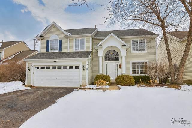 940 Tylerton Circle, Grayslake, IL 60030 (MLS #10975785) :: Janet Jurich