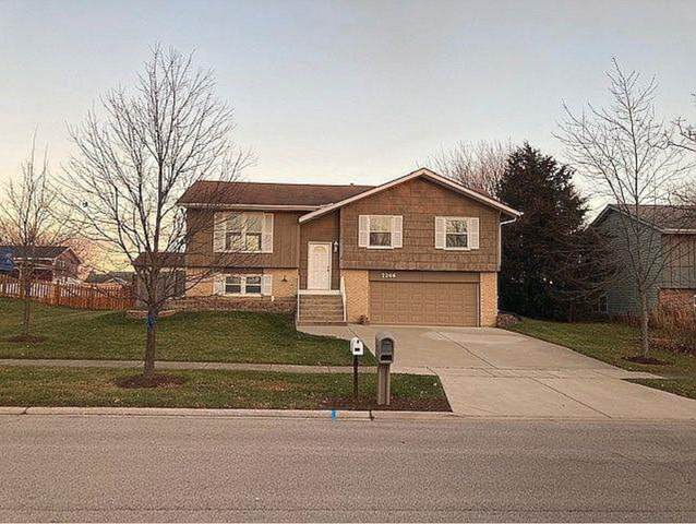 7246 W Mathews Drive, Frankfort, IL 60423 (MLS #10975796) :: Schoon Family Group