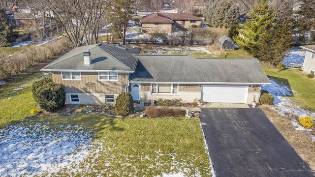 16408 S Mayleon Drive, Plainfield, IL 60586 (MLS #10975819) :: Jacqui Miller Homes
