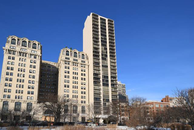 2314 N Lincoln Park West 11N, Chicago, IL 60614 (MLS #10975823) :: The Wexler Group at Keller Williams Preferred Realty