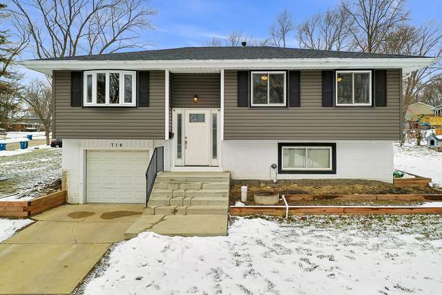 718 Brewster Lane, Schaumburg, IL 60193 (MLS #10975825) :: The Spaniak Team