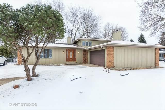 981 W Stearns Road, Bartlett, IL 60103 (MLS #10975835) :: Janet Jurich