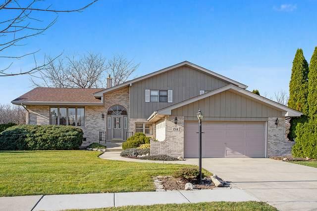 1314 Arbor Drive, Lemont, IL 60439 (MLS #10975879) :: The Dena Furlow Team - Keller Williams Realty