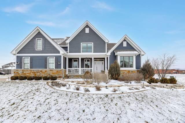 4343 Winterberry Avenue, Naperville, IL 60564 (MLS #10976083) :: The Dena Furlow Team - Keller Williams Realty