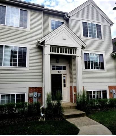 22 New Haven Drive, Cary, IL 60013 (MLS #10976186) :: The Wexler Group at Keller Williams Preferred Realty