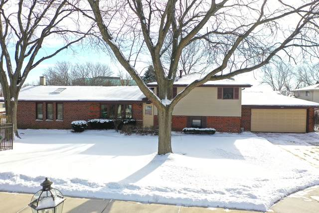 3825 N Galesburg Court, Arlington Heights, IL 60004 (MLS #10976492) :: Helen Oliveri Real Estate