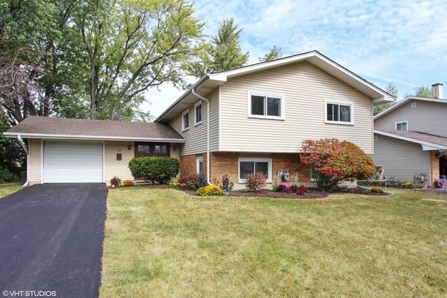 640 Northview Lane, Hoffman Estates, IL 60195 (MLS #10976495) :: Schoon Family Group