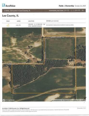 1145 Sleepy Hollow Road, Amboy, IL 61310 (MLS #10976597) :: The Dena Furlow Team - Keller Williams Realty