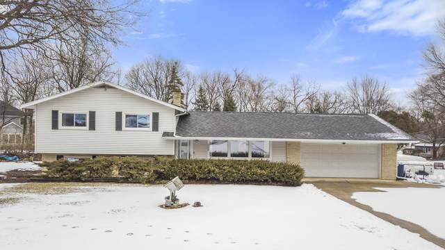 25W062 Wood Court S, Naperville, IL 60563 (MLS #10976618) :: The Dena Furlow Team - Keller Williams Realty