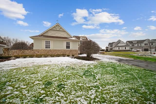 8651 Saddlebred Court, Frankfort, IL 60423 (MLS #10976859) :: Jacqui Miller Homes