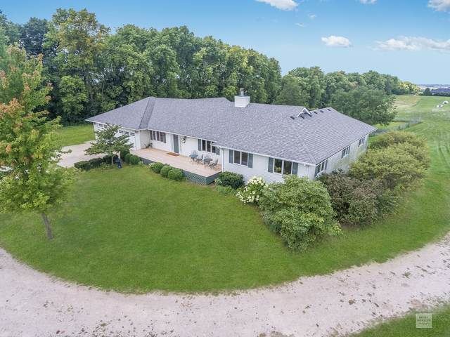 13979 Roods Road, Newark, IL 60541 (MLS #10976900) :: Schoon Family Group