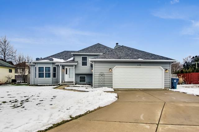 1135 Mary Jane Lane, Beach Park, IL 60087 (MLS #10976947) :: The Spaniak Team