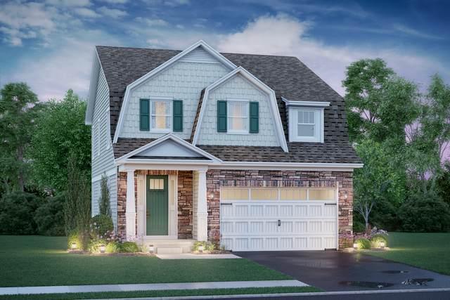 1 Potter Court, Hawthorn Woods, IL 60047 (MLS #10976993) :: Helen Oliveri Real Estate