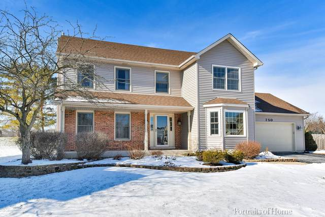 750 Wintergreen Court, Aurora, IL 60504 (MLS #10976994) :: Janet Jurich