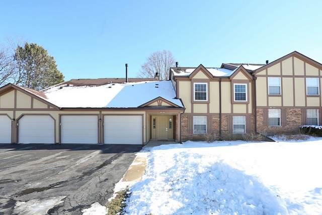 1067 Auburn Lane #1067, Buffalo Grove, IL 60089 (MLS #10977108) :: Helen Oliveri Real Estate