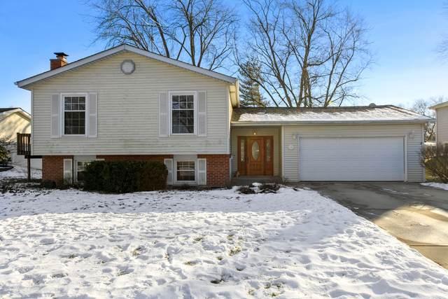 405 70th Street, Darien, IL 60561 (MLS #10977189) :: Jacqui Miller Homes