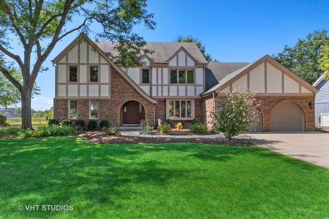 1427 Druid Hills Court, Naperville, IL 60563 (MLS #10977275) :: Suburban Life Realty