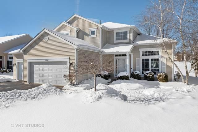 1159 Heavens Gate, Lake In The Hills, IL 60156 (MLS #10977368) :: Helen Oliveri Real Estate