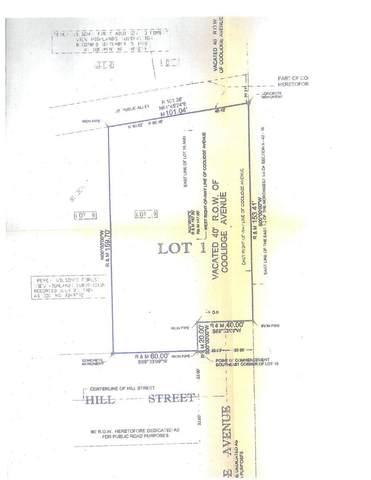 1262 W Hill Street, Palatine, IL 60067 (MLS #10977392) :: Helen Oliveri Real Estate