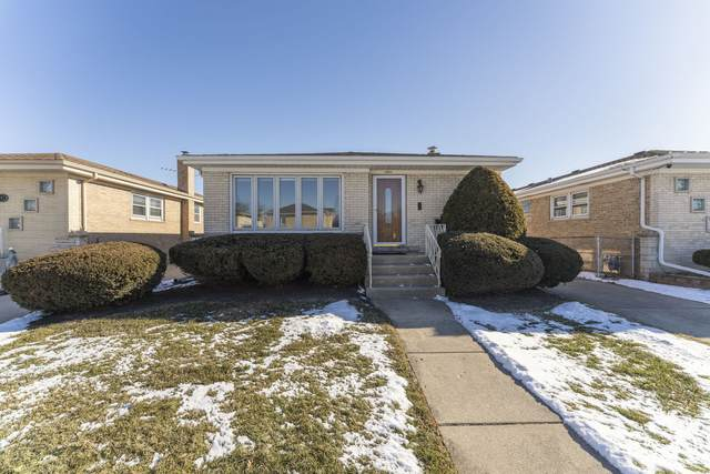 4901 N Leonard Drive, Norridge, IL 60706 (MLS #10977433) :: Schoon Family Group