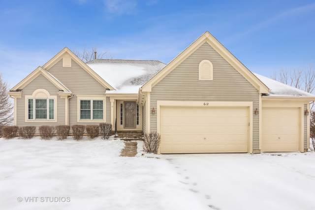 612 Camden Lane, Port Barrington, IL 60010 (MLS #10977459) :: Helen Oliveri Real Estate