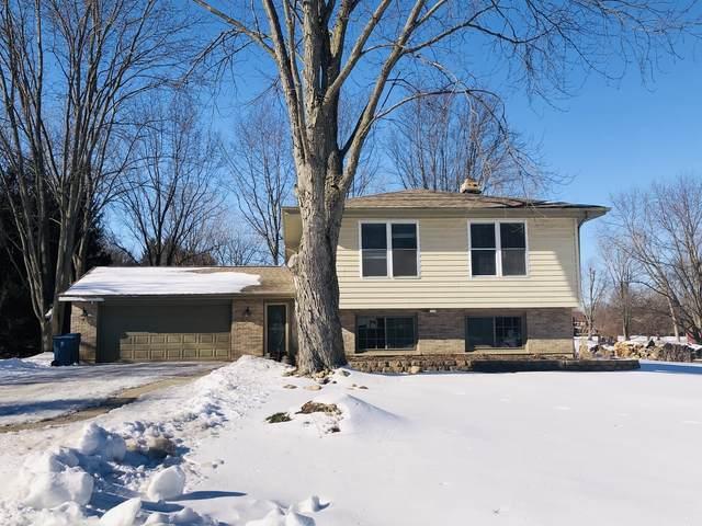 12N226 Tina Trail, Elgin, IL 60124 (MLS #10977483) :: O'Neil Property Group