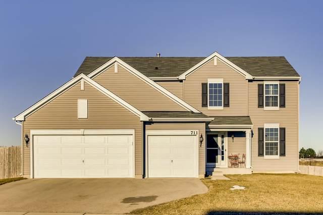711 Windett Ridge Road, Yorkville, IL 60560 (MLS #10977558) :: The Dena Furlow Team - Keller Williams Realty