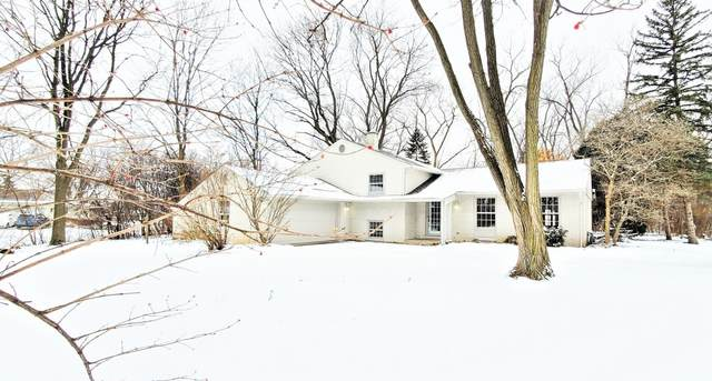 25W269 Lacey Avenue, Naperville, IL 60563 (MLS #10977705) :: Ryan Dallas Real Estate