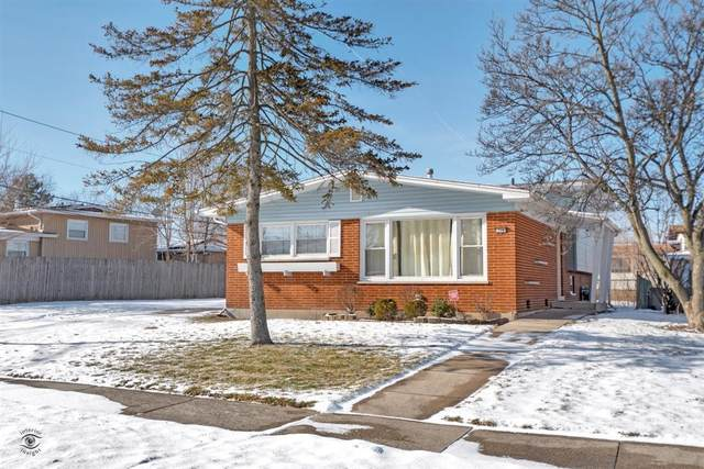 228 Brentwood Drive, Chicago Heights, IL 60411 (MLS #10977753) :: The Spaniak Team