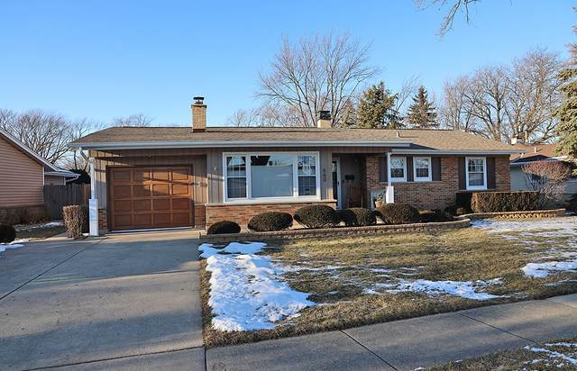 660 Walnut Lane, Elk Grove Village, IL 60007 (MLS #10977799) :: Helen Oliveri Real Estate