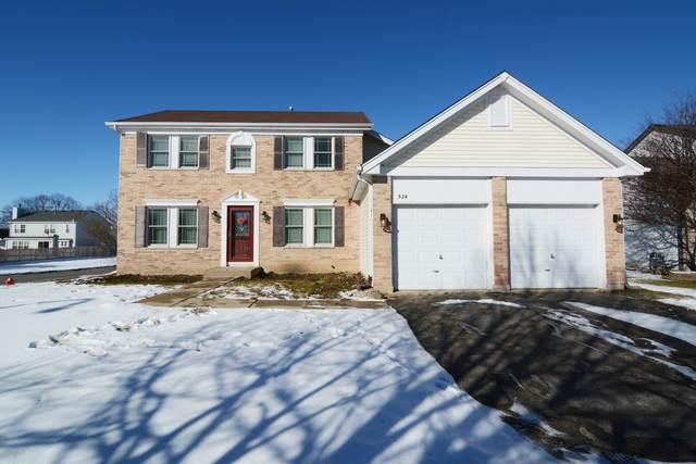 324 Cornwall Avenue, South Elgin, IL 60177 (MLS #10977810) :: Jacqui Miller Homes