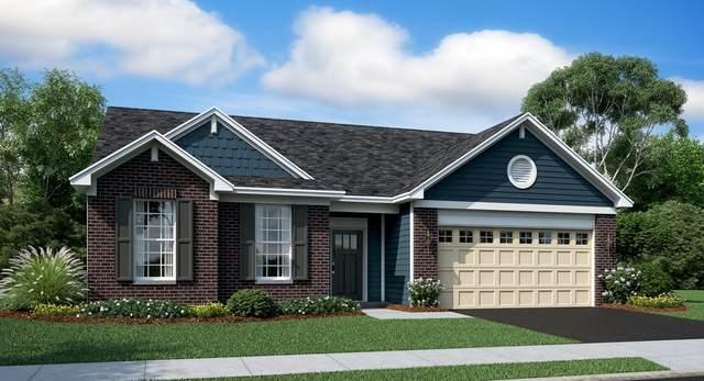 1089 Black Cherry Drive, Crystal Lake, IL 60012 (MLS #10978229) :: Suburban Life Realty