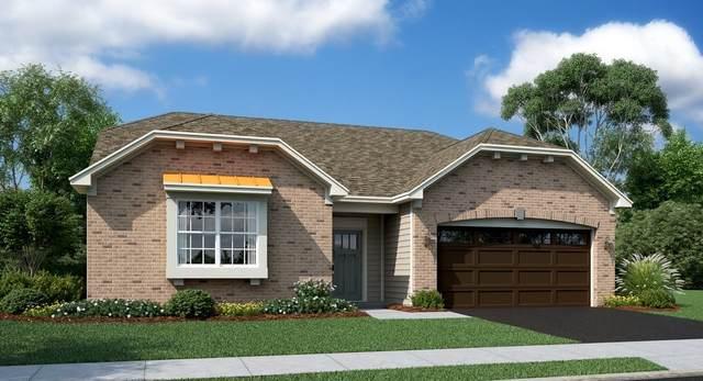 1117 Black Cherry Drive, Crystal Lake, IL 60012 (MLS #10978231) :: Suburban Life Realty