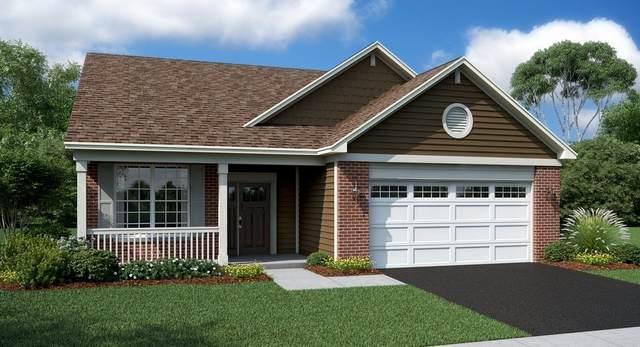 1121 Black Cherry Drive, Crystal Lake, IL 60012 (MLS #10978235) :: Suburban Life Realty