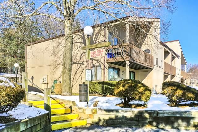 48 Oak Hill Colony Street #4, Fox Lake, IL 60020 (MLS #10978295) :: Jacqui Miller Homes