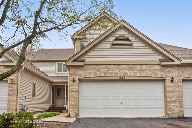 487 Doverton Lane, Fox River Grove, IL 60021 (MLS #10978337) :: Helen Oliveri Real Estate