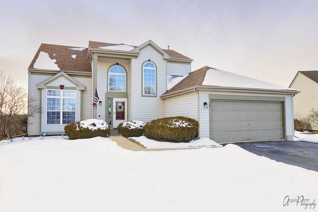 16 Gail Court, Lake In The Hills, IL 60156 (MLS #10978439) :: Jacqui Miller Homes