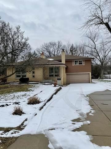 524 Brookwood Drive, Olympia Fields, IL 60461 (MLS #10978483) :: Jacqui Miller Homes
