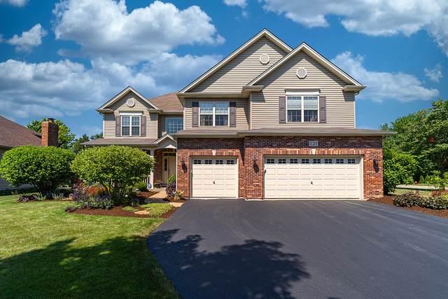 121 Pineridge Drive, Oswego, IL 60543 (MLS #10978488) :: Jacqui Miller Homes