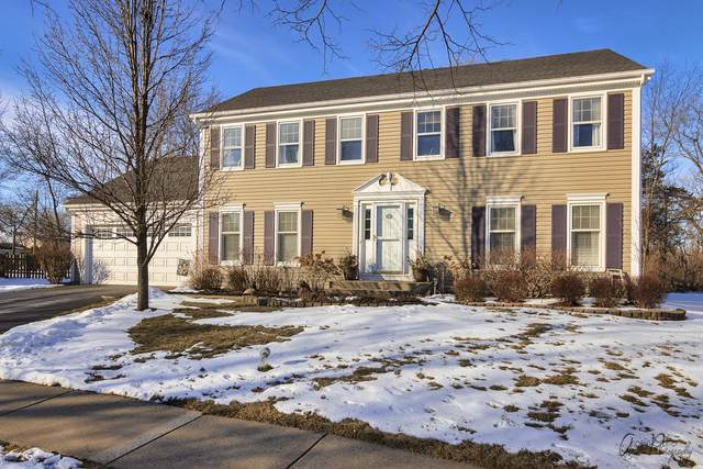 33772 N Shawnee Avenue, Grayslake, IL 60030 (MLS #10978601) :: Schoon Family Group
