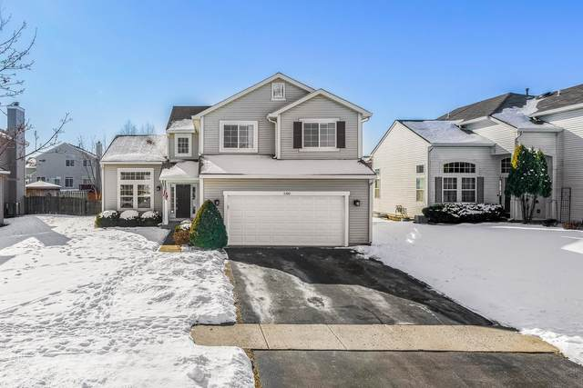 5390 Chancery Way, Lake In The Hills, IL 60156 (MLS #10978949) :: Janet Jurich