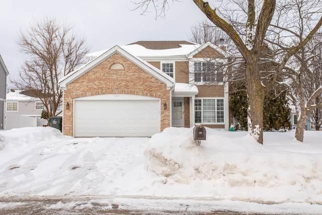 287 W Harvard Circle, South Elgin, IL 60177 (MLS #10979034) :: Jacqui Miller Homes