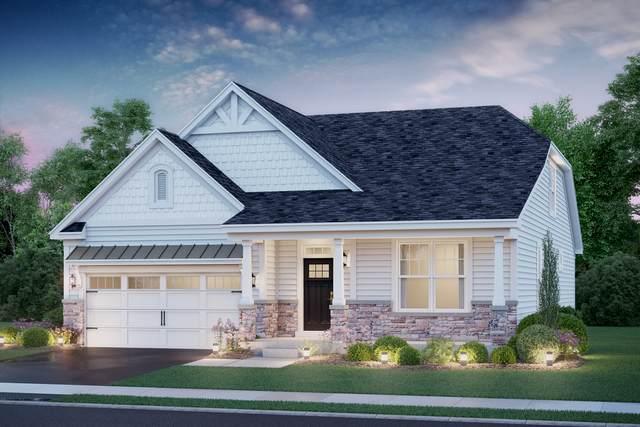 232 Hoffman Drive, Buffalo Grove, IL 60089 (MLS #10979224) :: Schoon Family Group