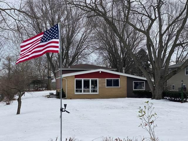 1N433 Park Boulevard, Glen Ellyn, IL 60137 (MLS #10979289) :: Schoon Family Group