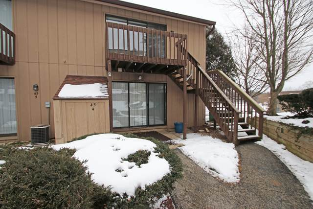 45 Nassau Colony #4, Fox Lake, IL 60020 (MLS #10979343) :: Jacqui Miller Homes